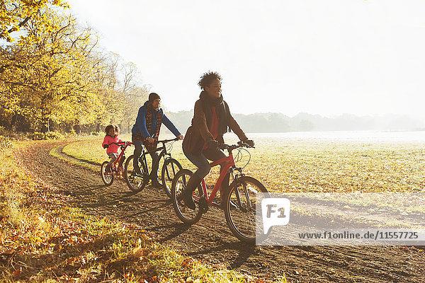 Verspieltes junges Familienradfahren auf dem Weg im sonnigen Herbstpark