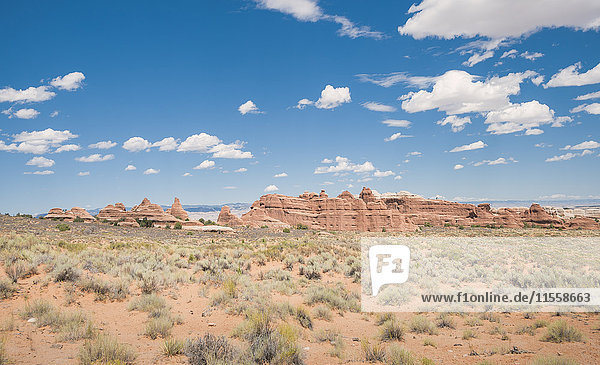 USA  Utah  Arches Nationalpark  Devils Garden Trail