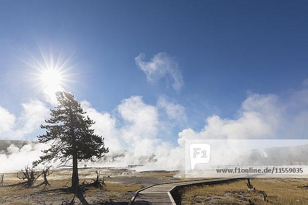 USA  Yellowstone National Park  boardwalk through Biscuit Basin