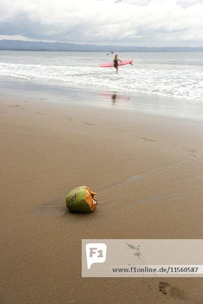 Indonesien  Java  Kokosnuss und Frau mit Surfbrett am Strand