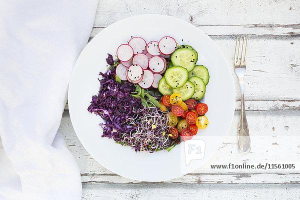 Teller mit Bio-Blattsalat  Rotkohl  Tomaten  Gurken und Rettichsprossen