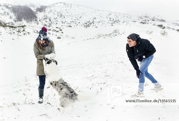 Junges Paar spielt mit seinem Hund im Schnee