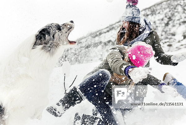 Drei Freunde mit ihrem Hund beim Spaß im Schnee