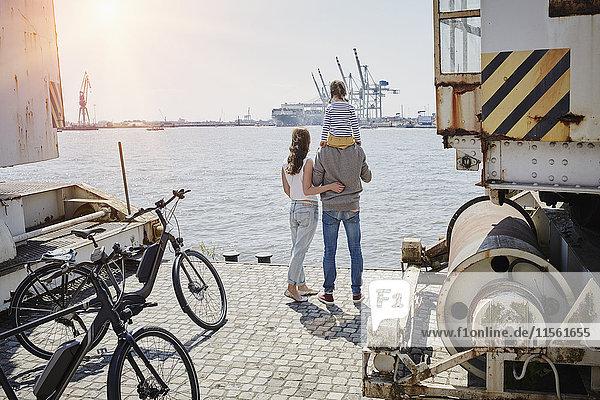 Deutschland  Hamburg  Familie bei einer Fahrradtour an der Elbe