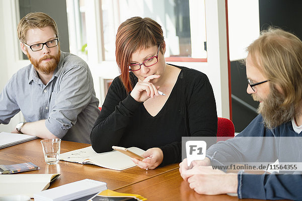 Schweden  Ideenaustausch während des Arbeitstreffens