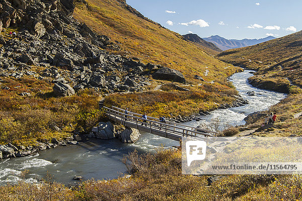 Hikers on the bridge over Savage River in autumn  Denali National Park  Interior Alaska  USA