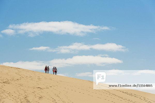 'Dune at Bazaruto Island  the largest island in the Bazaruto Archipelago; Mozambique'