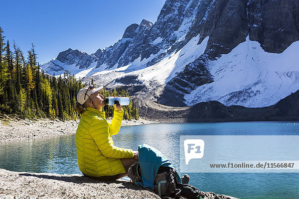 'Female hiker drinking from water bottle on rocky alpine lake shoreline with snowed mountain cliffs in the background; Vermillion Crossing  British Columbia  Canada'
