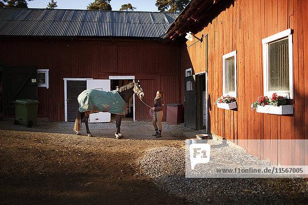 Schweden  Uppland  Faringso  Frau hält Pferd bei Zaumzeug
