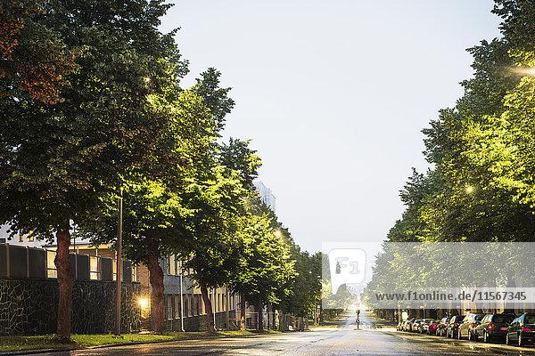 Finnland  Pirkanmaa  Tampere  Straße zwischen Bäumen