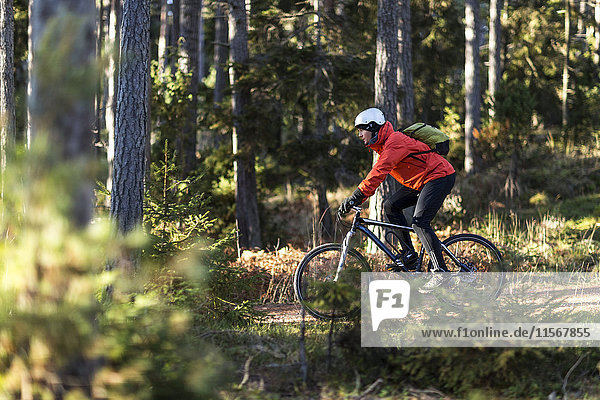Man on bike in forest
