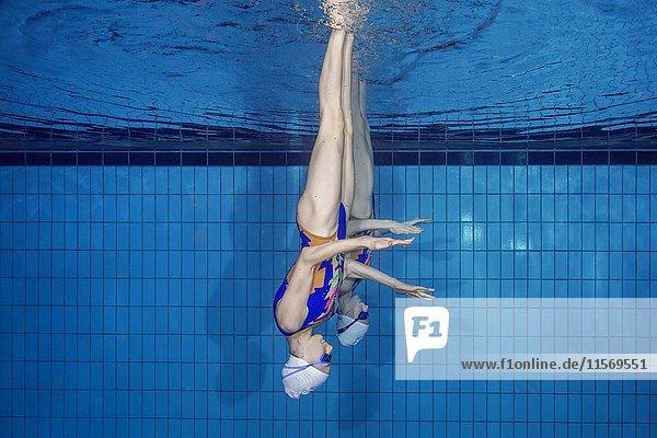 Unterwasseransicht   Synchronschwimmen in einem Swimmingpool  Ukraine  Europa