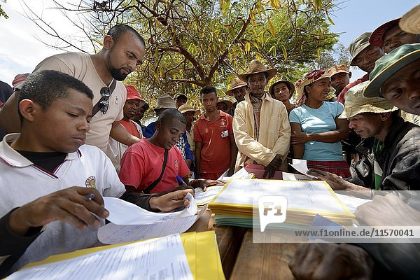 Dorfbewohner füllen Anträge zur Zertifizierung ihres Landes auf dem Dorfplatz aus  Dorf Analakely  Tanambao Commune  Distrikt Tsiroanomandidy  Region Bongolava  Madagaskar  Afrika