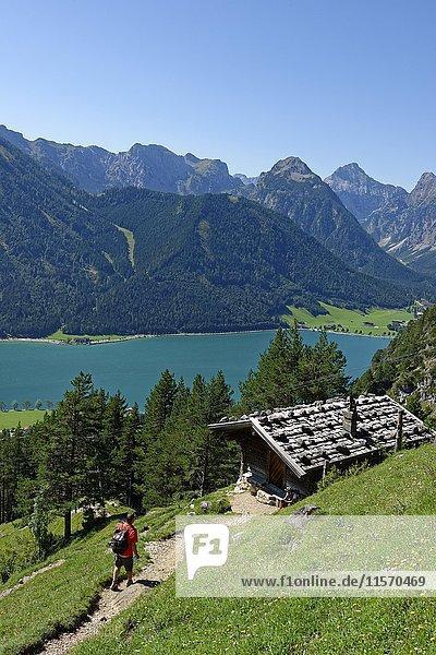 Wanderer am Teisslalm  Achensee  Rofangebirge  Tirol  Österreich  Europa
