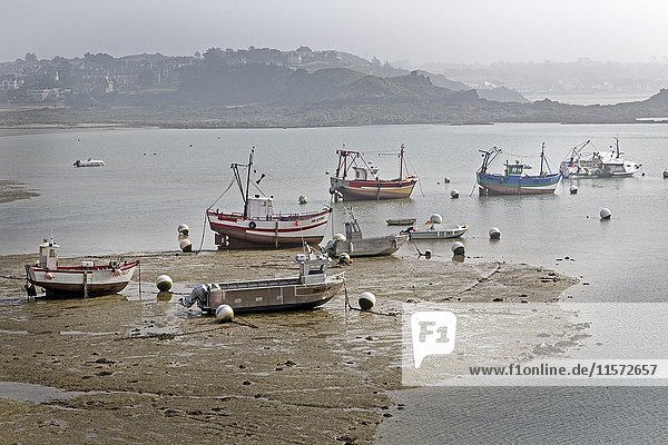 Fishing boats in watts at low tide  Erguy  Brittany  France  Europe