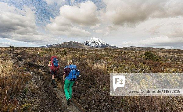 Wanderer,  Vulkan Mount Tongariro und Mount Ngauruhoe,  Tongariro National Park,  Südinsel,  Neuseeland,  Ozeanien