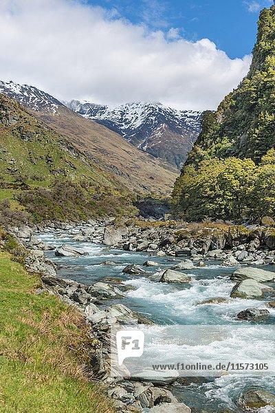 Matukituki River  Fluss fließt durch Tal  Mount Aspiring National Park  Otago  Südinsel  Neuseeland  Ozeanien