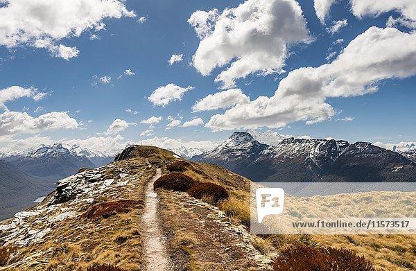 Wanderweg  Mount Alfred  Glenorchy bei Queenstown  Südliche Alpen  Otago  Südinsel  Neuseeland  Ozeanien