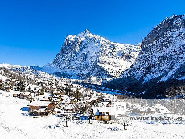 Winterlandschaft  Grindelwald  hinten Mittelhorn und Wetterhorn  Interlaken-Oberhasli  Berner Oberland  Kanton Bern  Schweiz  Europa