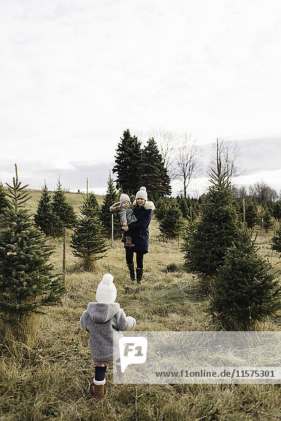 Mother and baby girls in Christmas tree farm  Cobourg  Ontario  Canada