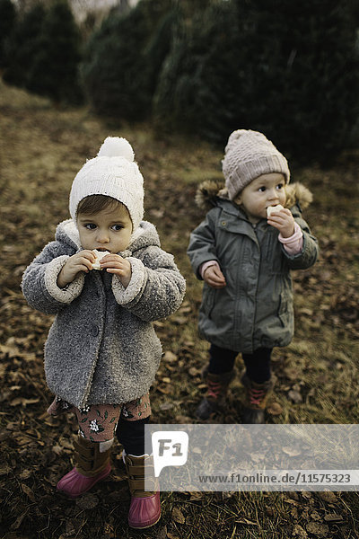 Baby girls eating bread in forest