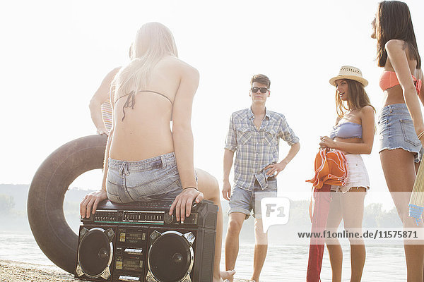 Group of friends enjoying beach party