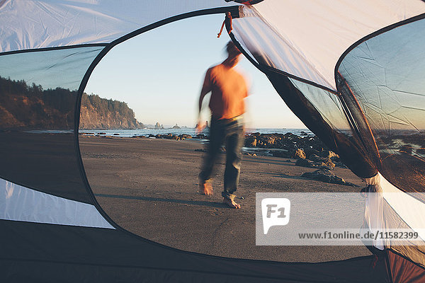 Mann  der in der Dämmerung am Strand spazieren geht  im Vordergrund ein Campingzelt  Olympic National Park  Washington  USA.
