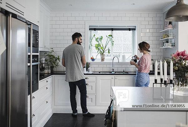 Rückansicht des mittleren erwachsenen Paares  das zu Hause in der Küche arbeitet.