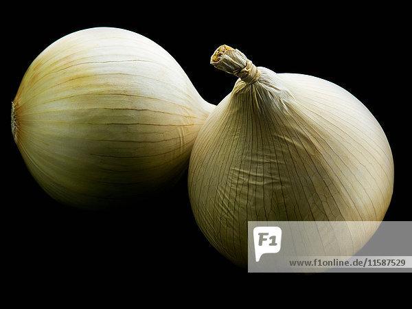 Zwei weiße Zwiebeln gegen schwarze