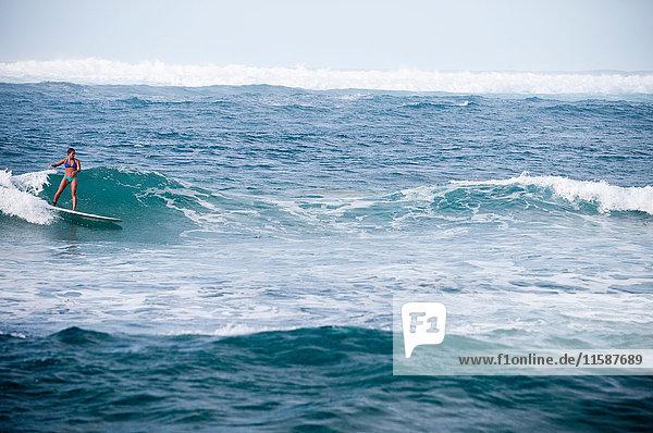 Surfer auf felsigen Wellen