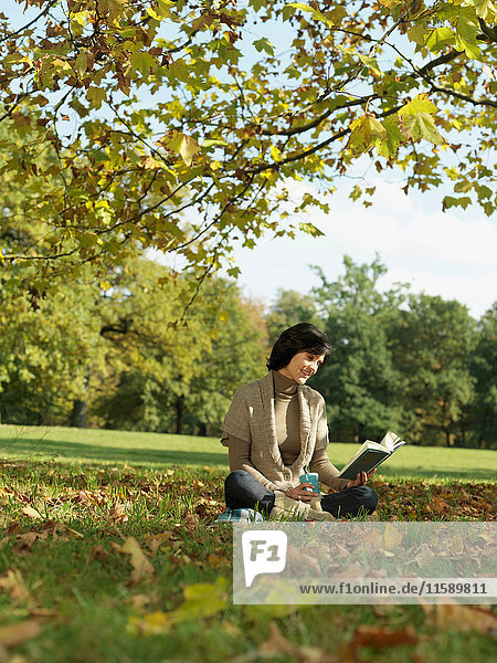 Woman under tree reading book in Autumn