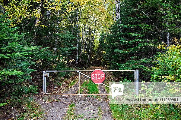 Stoppschild am Tor zum Wald