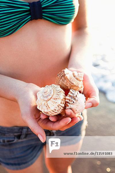 Frau hält Muscheln am Strand