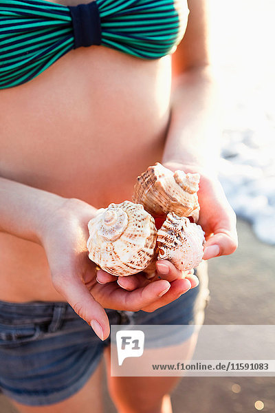 Woman holding seashells on beach