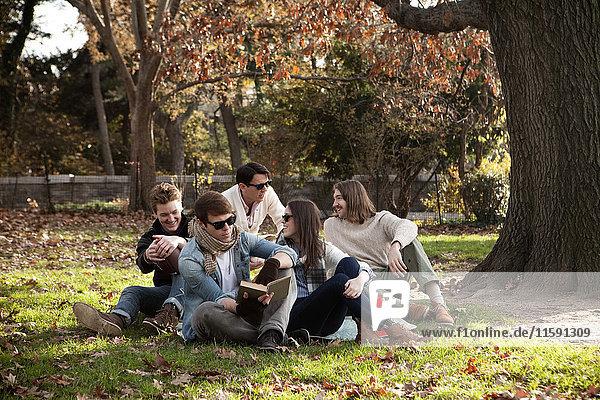 College-Freunde entspannen im Park