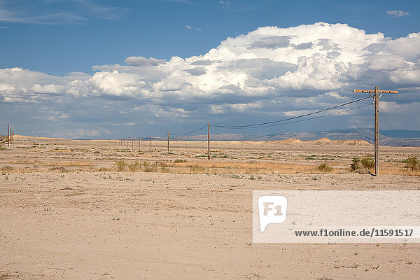 Elektrische Masten in isolierter Szene  Utah  USA