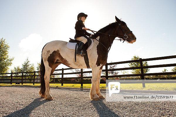 Boy horse riding in sunlight