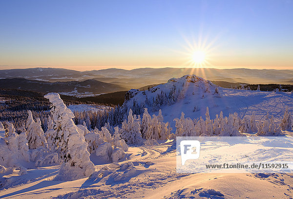 Germany  Bavaria  Bavarian Forest in winter  Bodenmaiser Riegel at sunset