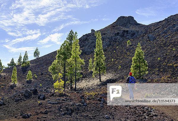 Spanien  Kanarische Inseln  Teneriffa  Frau auf Wanderweg  Montana Negra oder Vulkan Garachico  bei El Tanque