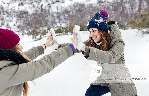 Zwei beste Freunde beim Kämpfen im Schnee