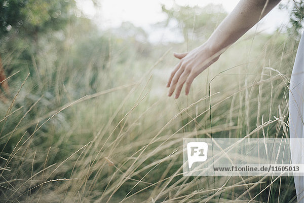 Hand of Caucasian woman standing in tall grass