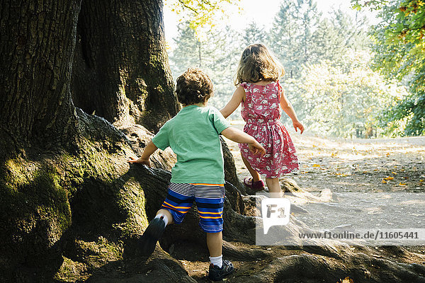 Caucasian brother and sister walking on tree roots