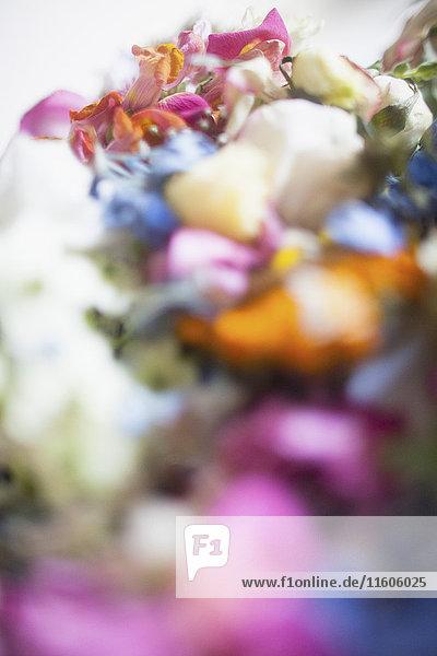 Nahaufnahme von mehrfarbigen Frischblumen
