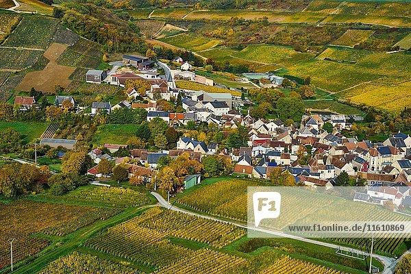 France  Cher 18  Chavignol village  vineyard in autumn.