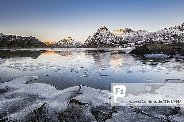 Eis am Ufer des Fjords  Flakstadpollen  Flakstadøya  Lofoten  Norwegen  Europa