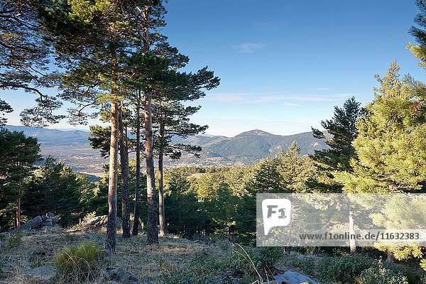 Sierra de Guadarrama from La Barranca. Navacerrada. Madrid. Spain. Europe.