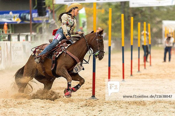 Pole bending race. Female rodeo competition celebrated in the Las Malocas Park. Villavicencio  Colombia.