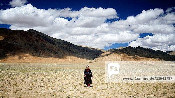 India  Jammu and Kashmir State  Himalaya  Ladakh  high-altitude plateau of Changthang (Changtang)  Rupshu valley  Rumtse to Tso Moriri trek  woman wearing a goncha (Ladakhi traditional dress) near Tso Kar lake  Model Released