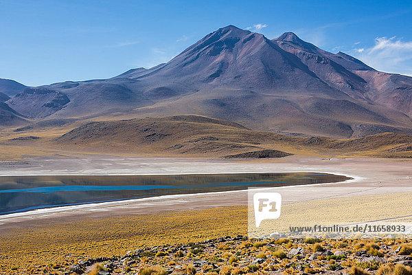 Lake miscanti  San Pedro de Atacama  Chile