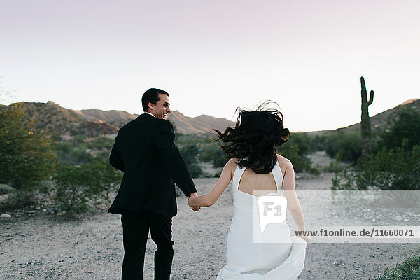Bride and groom in arid landscape  holding hands  running  rear view